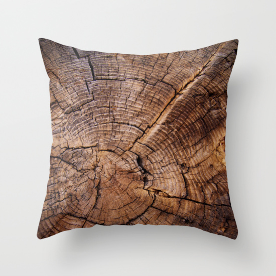 Inexpensive Throw Pillows For Couch